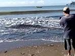 hiu-paus-terdampar-dan-mati-di-pantai-bayem-desa-keboireng-kecamatan-besuki-tulungagung.jpg