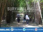 hutan-bambu-keputih-surabaya.jpg