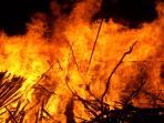 ilustrasi-api-terbakar-kebakaran_20150914_163316.jpg