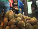 ilustrasi-durian_20151216_171909.jpg