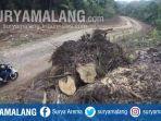 jalan-lintas-selatan-jls-di-hutan-lindung-kondangmerak-kecamatan-bantur-kabupaten-malang.jpg