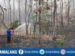 kebakaran-hutan-tuban.jpg