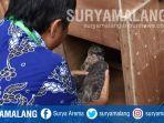 kepala-lab-biologi-universitas-negeri-malang-um-memasukkan-seekor-elang-jawa_20180215_180555.jpg
