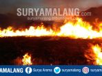 kondisi-savana-di-kawasan-wisata-gunung-bromo-yang-terbakar-pada-malam-hari-senin-1192017_20170911_191849.jpg