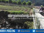 lahan-pertanian-di-dusun-kekep-desa-tulungrejo-kota-batu_20170423_135908.jpg