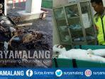 ledakan-di-spbu-sidowayah-beji-kabupaten-pasuruan_20171119_130748.jpg