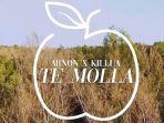lirik-lagu-te-molla-arnon-feat-killua-dengan-terjemahanya-populer-dan-viral-di-tik-tok.jpg