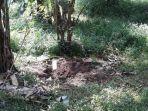 lokasi-mayat-perempuan-misterius-yang-dikubur-di-taman-kota-tol-jagorawi-makasar-jakarta-timur.jpg