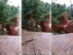 longsor-desa-pasir-panjang-kecamatan-salem-kabupaten-brebes-jawa-tengah_20180222_204724.jpg