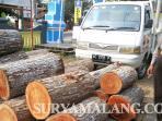 maling-kayu-donomulyo-perhutani_20151001_201249.jpg