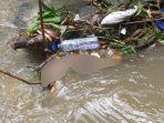 mayat-bayi-perempuan-membusuk-ditemukan-di-sungai-metro-lowokwaru-kota-malang.jpg