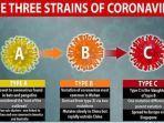 mutasi-varian-virus-corona-sars-cov-2-penyebab-penyakit-covid-19.jpg