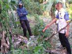 olah-tkp-orang-terjatuh-dari-pohon-petai-setinggi-8-meter-di-desa-talun-kecamatan-ngebel-ponorogo.jpg