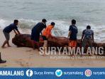 pantai-bangsong-teluk-asmara-bta-kabupaten-malang_20171230_202520.jpg
