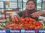 pedagang-sayuran-di-pasar-klojen-kota-malang-saat-merapikan-cabai-rawit-pada-rabu-177.jpg