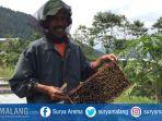 pemilik-ternak-madu-di-kota-batu-juwarno-menunjukkan-sisir-lebah-miliknya_20171102_202209.jpg
