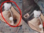 penampakan-sepatu-jamuran-milik-ulfi-yang-lupa-dijemur-seminggu-virla-di-tiktok.jpg
