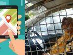 penampakan-taksi-online-anti-begal-buat-driver-perempuan-di-palembang.jpg