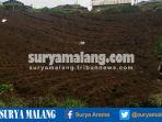 penataan-tanah-pertanian-yang-berbahaya-di-kota-batu_20170108_210128.jpg