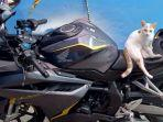 pencurian-motor-honda-cbr-250-rr-di-garasi-rumah-jalan-kemantren-i-kecamatan-sukun-kota-malang.jpg