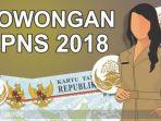 penerimaan-calon-pegawai-negeri-sipil-cpns_20180105_204501.jpg