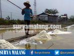 petani-garam-di-kabupaten-pasuruan_20161126_175424.jpg