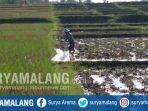 petani-menggarap-sawah-di-kabupaten-malang_20180727_185744.jpg