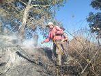 petugas-berusaha-memadamkan-kebakaran-hutan-di-gunung-semeru.jpg