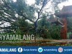 pohon-tumbang-timpa-situs-siti-inggil-di-trowulan-kabupaten-mojokerto_20171113_162241.jpg