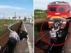 pria-menyelamatkan-bayi-dari-tertabrak-kereta-api_20171216_210021.jpg
