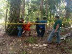 rekonstruksi-pembunuhan-janda-berinisial-r-di-kabupaten-musi-banyuasin-muba.jpg