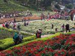 sejumlah-wisatawan-saat-menikmati-kebun-bunga-di-lokasi-wisata-selecta-kota-batu-jawa-timur_20170722_133330.jpg