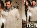 sinopsis-film-ek-tha-tiger-bollywood-india-di-antv-hari-minggu-1-maret-2020-dibintangi-salman-khan.jpg