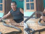 suryo-negoro-basuki-29-12-tahun-hidup-sekamar-dengan-ular-king-cobra-di-rumahnya-di-madiun.jpg