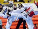 taekwondo_20150415_214212.jpg