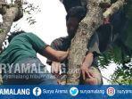 tamsir-52-warga-tuban-ditemukan-pingsan-di-atas-pohon-sabtu-14122019.jpg
