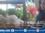 tanaman-dengan-teknik-dari-jepang-kokedama-yang-dikembangkan-dwi-lily-indayani-di-kota-batu_20180805_164623.jpg