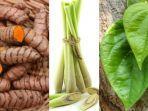 temulawak-pojok-kiri-sereh-tengah-dan-daun-sirih-pojok-kanan-tanaman-herbal-untuk-obat-batuk.jpg