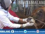 tim-dokter-dari-dinas-pertanian-dan-ketahanan-pangan-kota-malang-memeriksa-hewan-kurban-idul-adha.jpg