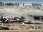 tsunami-di-jepang_20171204_152639.jpg