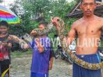 ular-di-tuban_20160422_151008.jpg