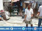 ular-sanca-sepanjang-3-meter-di-lingkungan-ngrebo-gedog-sananwetan-kota-blitar.jpg