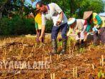 warga-bertani-baru-mendapat-uang-miliaran-rupiah-dari-menjual-tanah-di-kecamatan-jenu-tuban.jpg