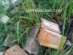 warga-menemukan-dua-kotak-amal-di-pemakaman-gatot-koco-kelurahan-kolpajung-pamekasan.jpg