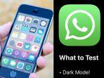 whatsapp-dark-mode-iphone.jpg