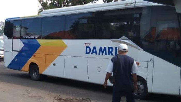 Minim Penumpang, Bus Damri Batu – Gunung Bromo Dioperasikan Sesuai Permintaan