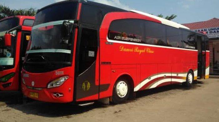 Damri Royal Class Layani Malang – Jakarta Full Toll, Nyaman Tarif Rp 375.000