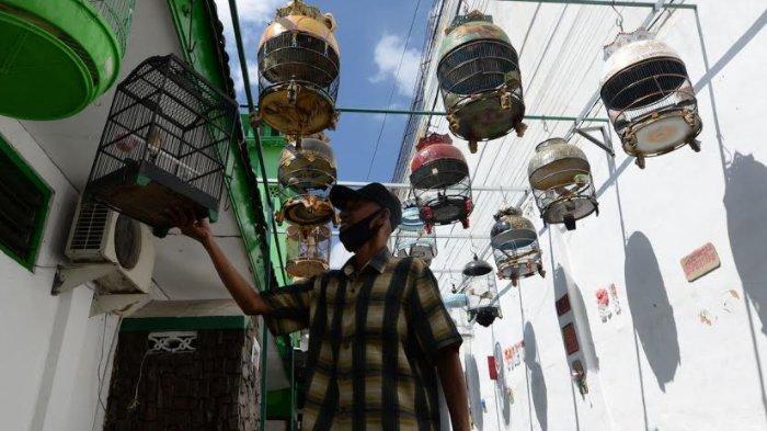 Koppid'02, Komunitas Pecinta Burung Perkutut Bentukan Warga RW 2 Kelurahan Keputran Surabaya
