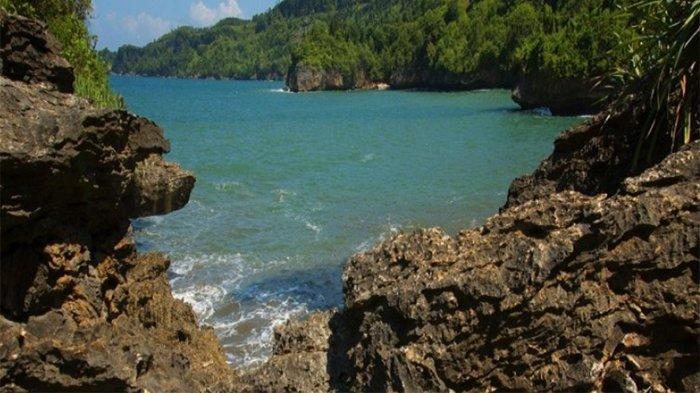 Pantai Taman Kili-Kili Trenggalek Diusulkan Jadi Kawasan Ekosistem Esensial