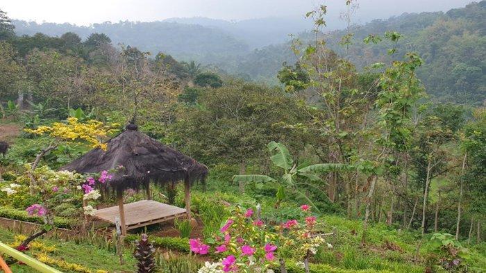Pemandangan di Sentra wisata Bukit Pecaringan di lereng Gunung Anjasmoro Dusun Jarak Krajan, Desa Jarak, Kecamatan Wonosalam, Kabupaten Jombang.